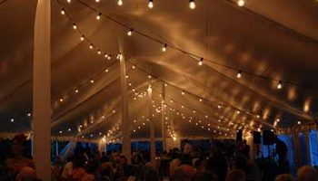 Festoon Lighting Ideas