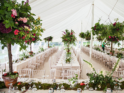 Marquee White Linings