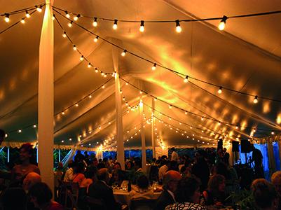 Queensberry Event Hire Interior Festoons